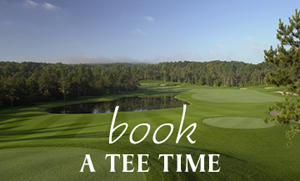 Hawks Eye Golf Bellaire Northern Michigan Book Teetime